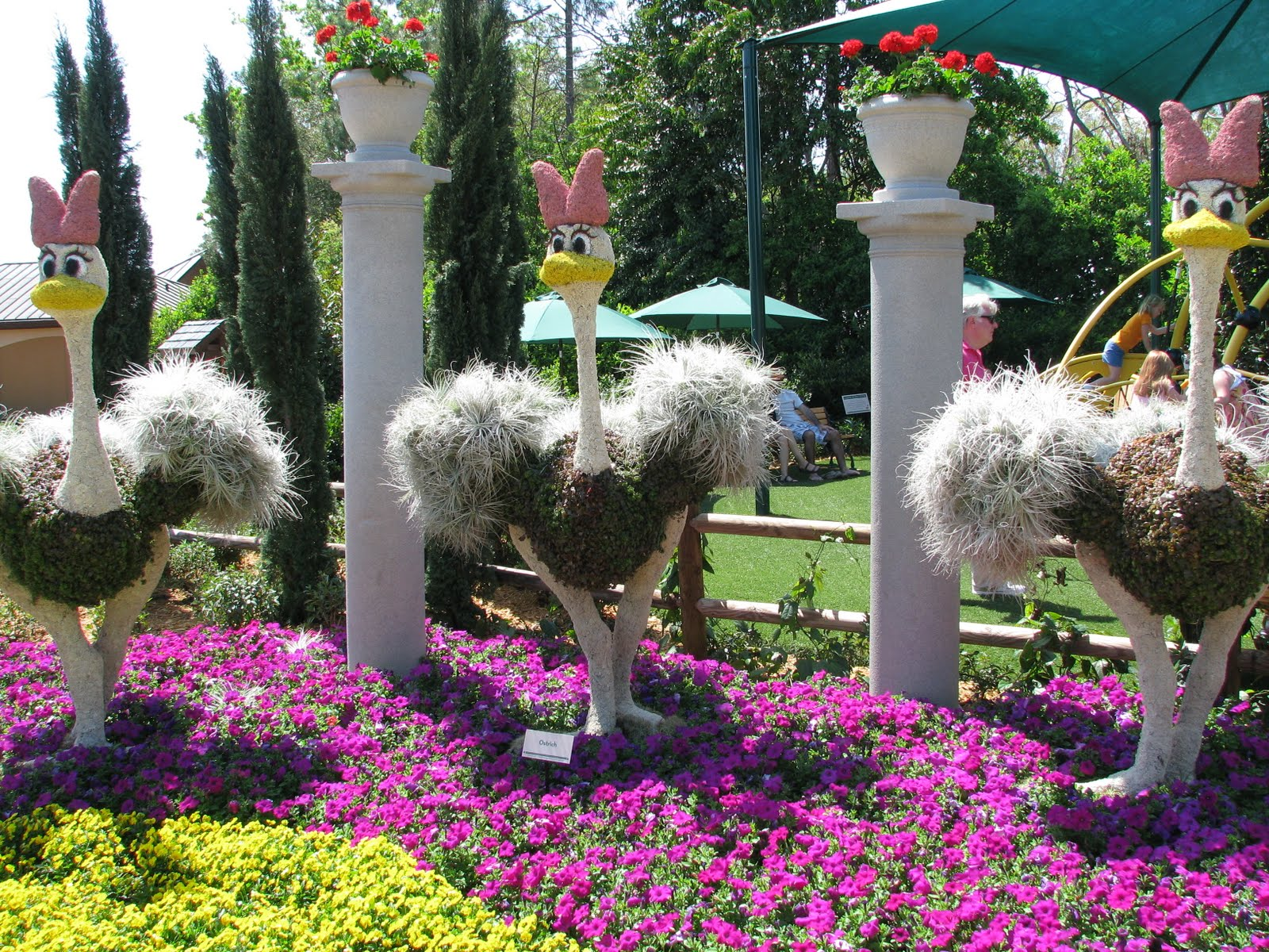 2010 Epcot Flower Garden Festival Topiary Pictures Disney World Blog Discussing Parks