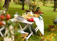 Пикник - сплошное удовольствие и комфортный отдых