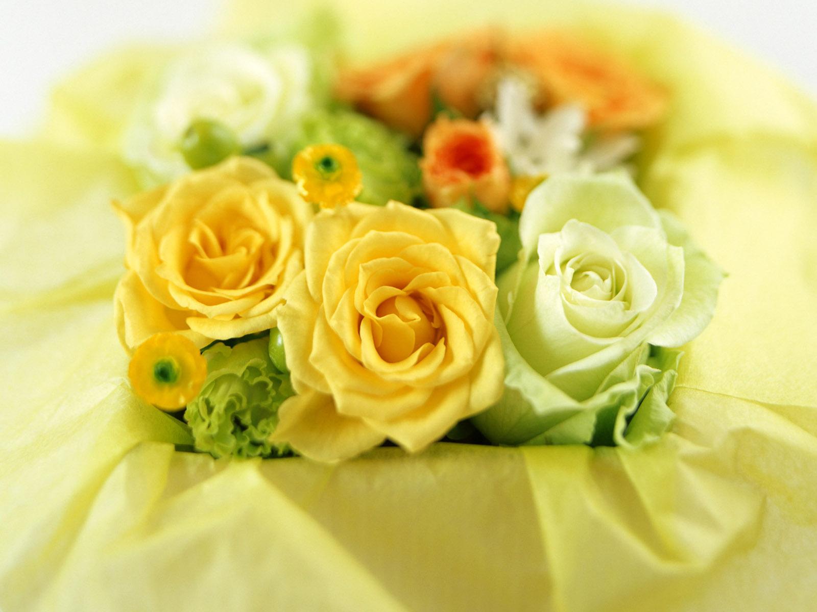 http://1.bp.blogspot.com/_cY1l96f0e6c/TMaWSXnrB9I/AAAAAAAAAcU/NYuH42OCc9Y/s1600/F+38.jpg