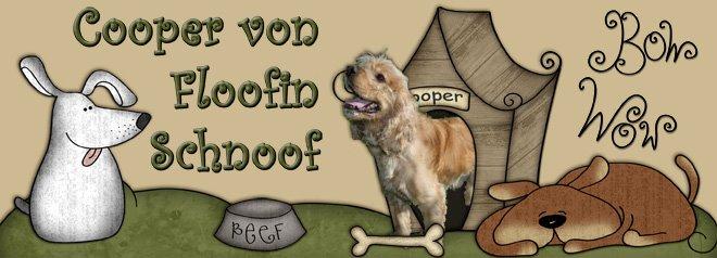 Cooper von Floofin Schnoof