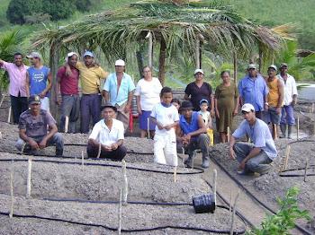 Projeto PAIS 2010