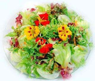 Salada_verão