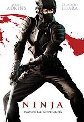 Baixar Filme Ninja (Dual Audio)
