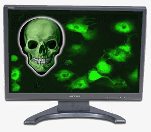 What is Computer Virus and How it spread
