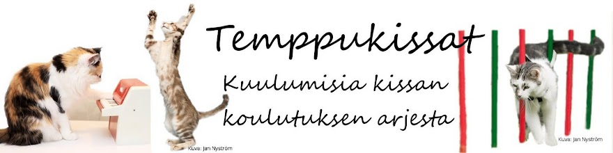 Temppukissat