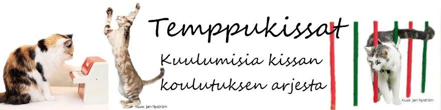 Temppukissat