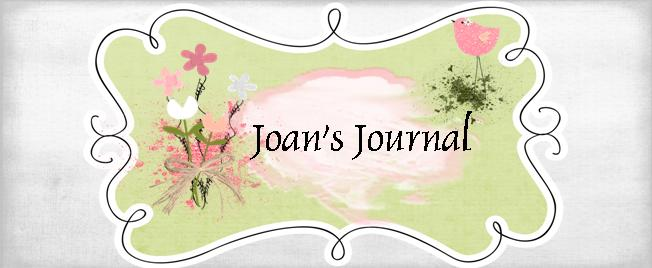Joan's Journal