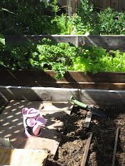 Garden Fun Summer Fun