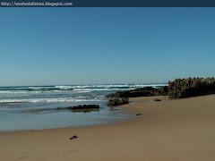 Sonho de uma praia...