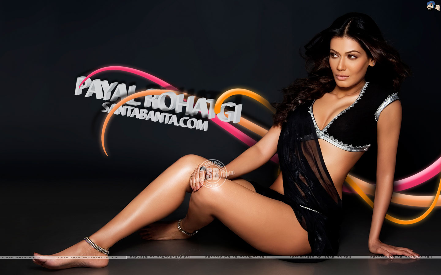 Payal Rohatgi - Picture