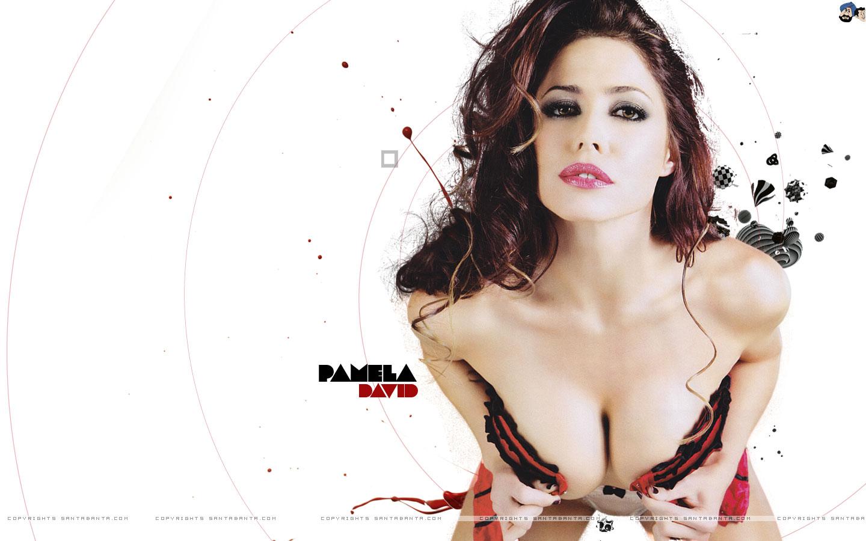 http://1.bp.blogspot.com/_cewgUlffLHE/TMHPwV6EHuI/AAAAAAAAKE8/9CTdrNIjLy8/s1600/pamela-david-0a.jpg