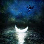 .•*soñando la lunA.•*