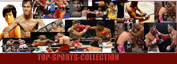 Top Sports Collection
