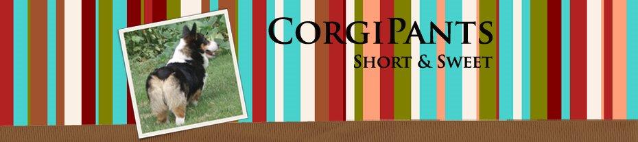CorgiPants Reviews and Giveaways