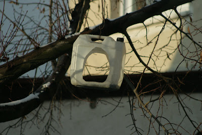 pilisvorosvar-daily-photo-birdhouse