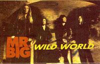"""Wild World"" Mr. Big"
