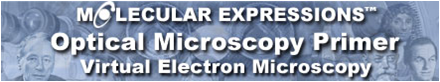 Microscopio Virtual / Virtual Electron Microscopy