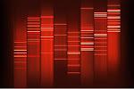DNA do nosso blog