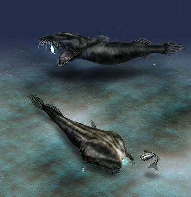 Bizarre Fish in Deep Sea
