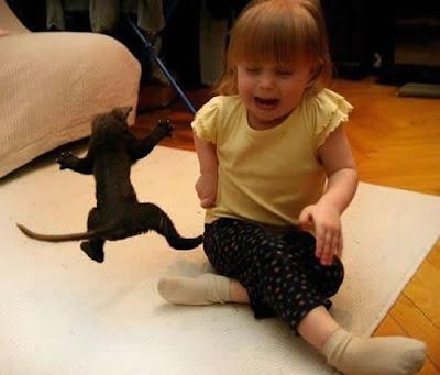 Ninja+Kitten+Vs.+Baby.jpg