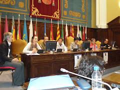Los planteamientos teóricos en el Centro UNESCO de Madrid