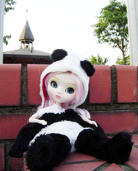 Août [2004] - Pullip Panda