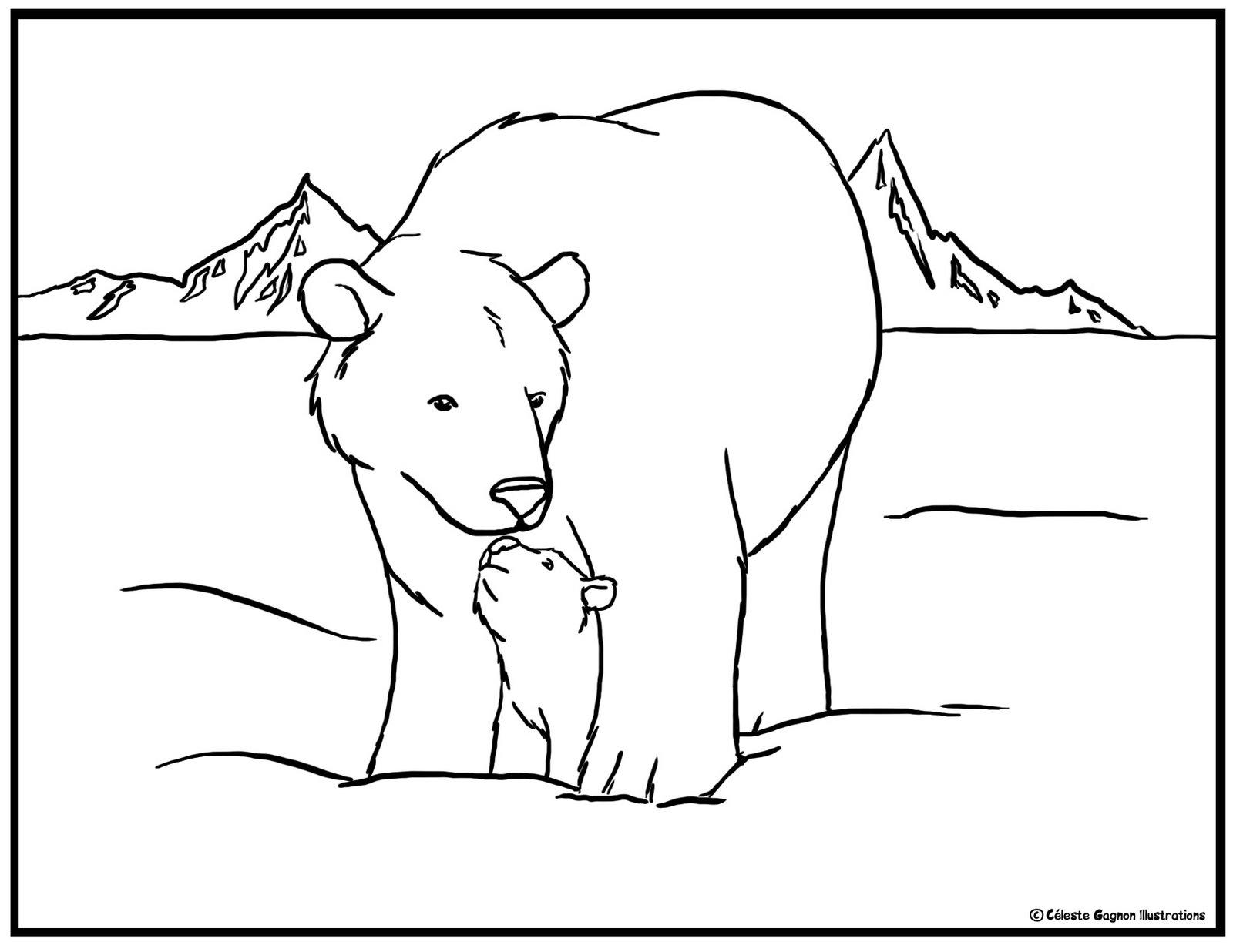 Polar Bear Face Template Bear face template cake ideas