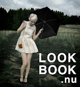 My Lookbook.