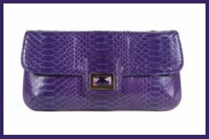 The House of Designer Handbags and Shoes: Kara Ross Fall Winter 2009 Clutch