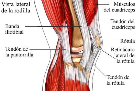 Lfk para la osteocondrosis de pecho