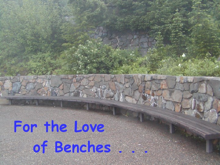 For the Love Of Benches  Continued . . .