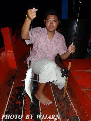 ปลาชักฮื้อ