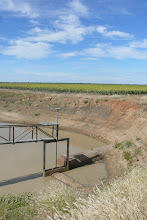Water from the upper Darling River system for Sun-Flower irrigation near St. George QLD, April 2008