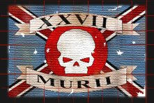 Regimental Banner of the 27th