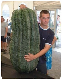 look at my large vegetable