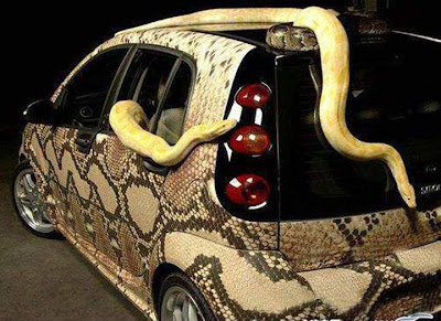 airbrushed car with snake skin