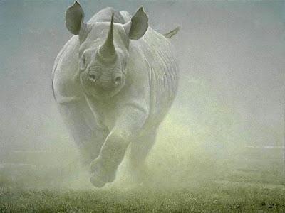 Power Play Rhinoceros