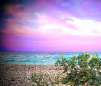indahnya ciptaan ALLAH