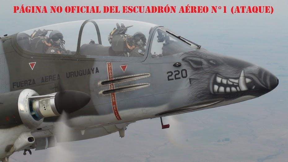 Escuadrón Aéreo N°1 (Ataque)