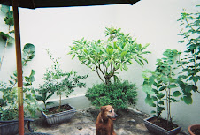 Me garden in back