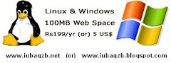 Web Hosting Space
