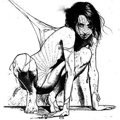 Arachnophilia by Marco Turini