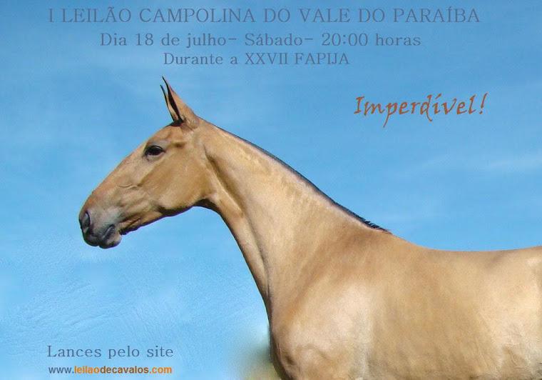 Banner Oficial do Leilao da FAPIJA - Jacarei - 2009