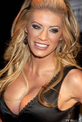 Ashley Massaro hot photo