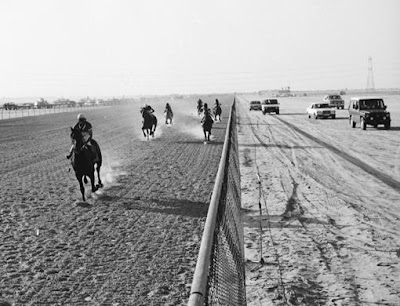 Nad Al Sheba through the years