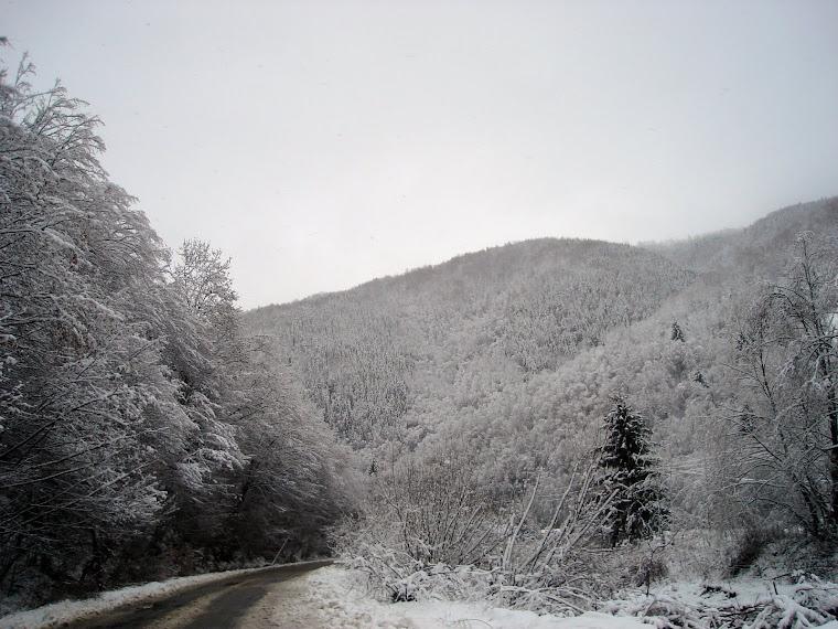 Feerie de iarnă