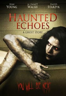 Haunted Echoes 2010 Hollywood Movie Watch Online