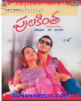 Pulakintha 2006 Telugu Movie Watch Online