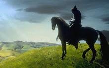[cavaliere+nero.jpg]