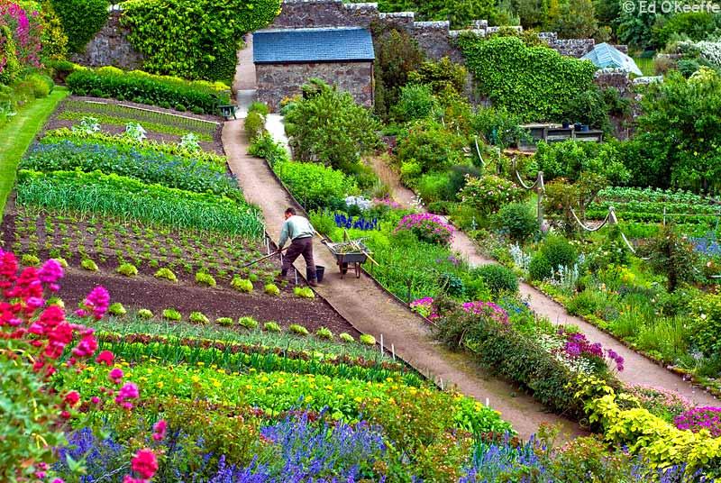 Reading the markets may 2010 for Garden design ideas scotland